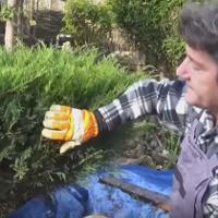 Garden Clean Up Altrincham